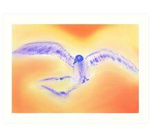 Three Gulls in Flight Art Print