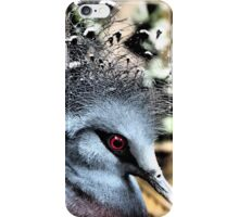 Feathers & Lace iPhone Case/Skin