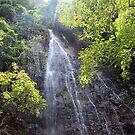 Waihe'e Falls by karolina