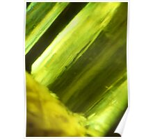 CHARTREUSE SERIES Abstract III Poster