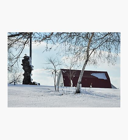 A snowy farm scene Photographic Print