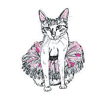 Cat in tu-tu Photographic Print