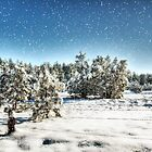 I'm Dreaming of a White Christmas  by Saija  Lehtonen