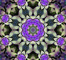Purple Bromeliad by Esperanza Gallego