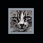 Cat Friend Portraits by Laurel  Coleman