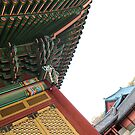 Changdeokgung Palace on an Angle by Jane McDougall