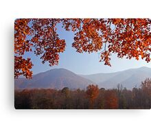 Layers of Autumn Canvas Print