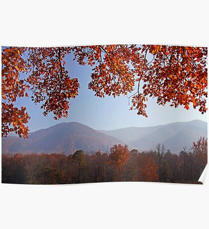 Layers of Autumn Poster
