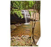 Serenity Falls, Buderim Forest Park Poster