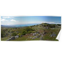 Middle Earth Panorama Poster