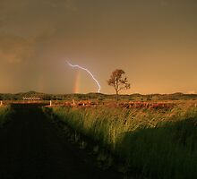 Storms and Weather by Jason Paterson