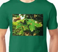 Autumn's Welcome Unisex T-Shirt