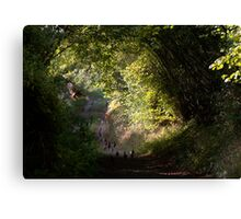 Flight of the partridge Canvas Print