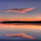 On The Wings Of A Dove - Narrabeen Lakes, Sydney Australia by Philip Johnson