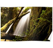 Marriners Falls in Paradise Valley 2 Poster