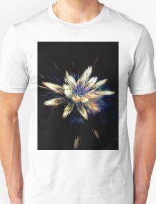 fireworks 2 T-Shirt