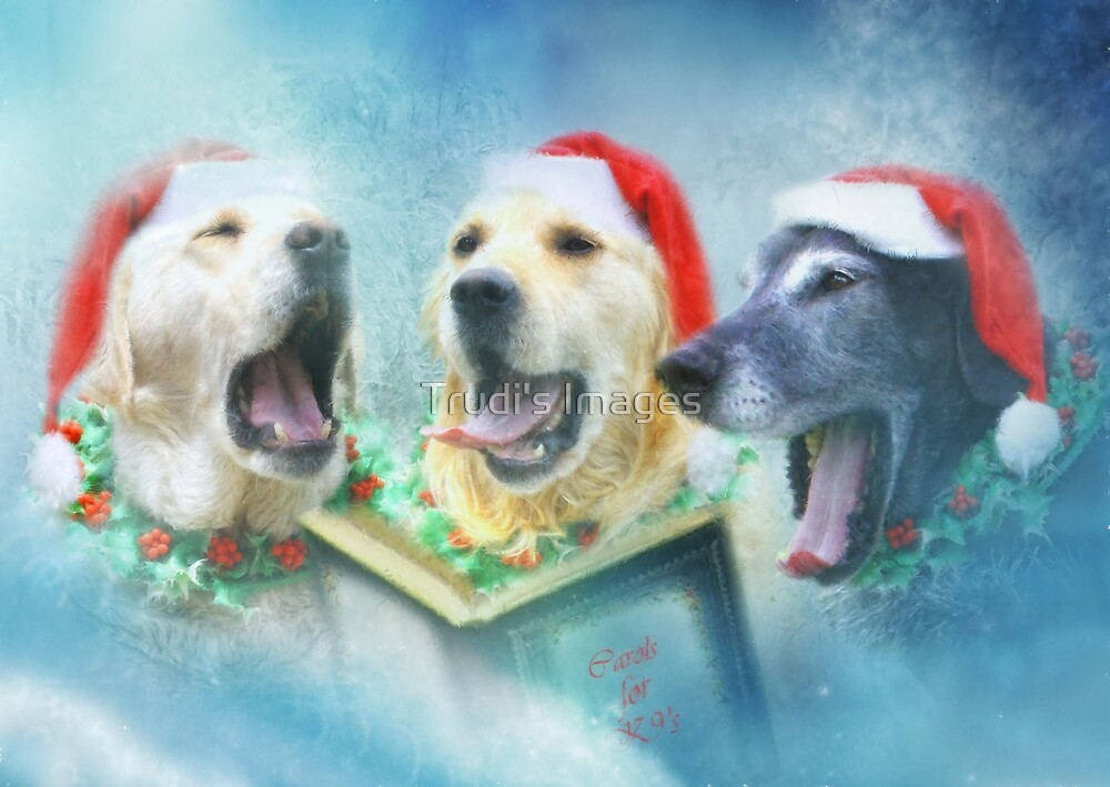 K9 Carolers by Trudi's Images