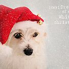 (day) Dreaming of a White Christmas by LauraMcLean