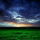 Hervey Bay Farm Sunset by Peter Doré