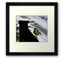 Fractalius Filter Great Tit Framed Print