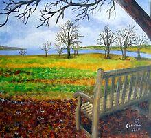 A Splendid View Take Two by Corrina Holyoake