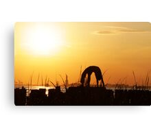 Yoga by the Statue of liberty, New York Canvas Print