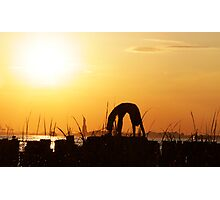 Yoga by the Statue of liberty, New York Photographic Print