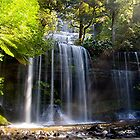 Russell Falls - Tasmania by Michael Tapping