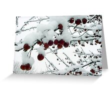 Snowy Crabapples Greeting Card