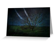 Tree@Night Greeting Card