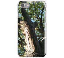 The Big Tree iPhone Case/Skin