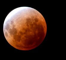 Nearing Totality • Brisbane • Queensland by William Bullimore