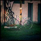 Holga III by guanabanana