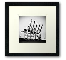 The Big 5 Framed Print