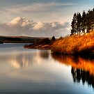 Alwen Reservoir: Take 2 by Aggpup