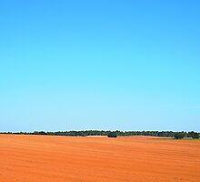 Blue Sky Over Plowed Field by joevoz