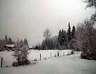 Winter Dawn by RC deWinter
