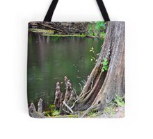 Cypress Tree Stump Tote Bag