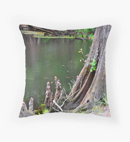 Cypress Tree Stump Throw Pillow