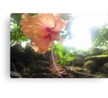 Heavenly Flower Canvas Print