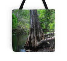 Cypress Tree Scene  Tote Bag