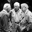 Three gentlemen from Sienna by Robert Down
