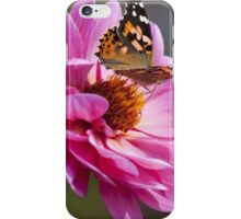flower_and_butterfly iPhone Case/Skin
