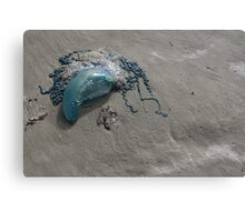 All Washed Up Canvas Print