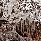 Icicles  by Braedene