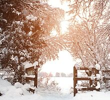 Ruff Wood Entrance - Snow Scene by Liam Liberty