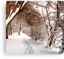 Secret Path - Ruff Wood - Snow Scene Canvas Print