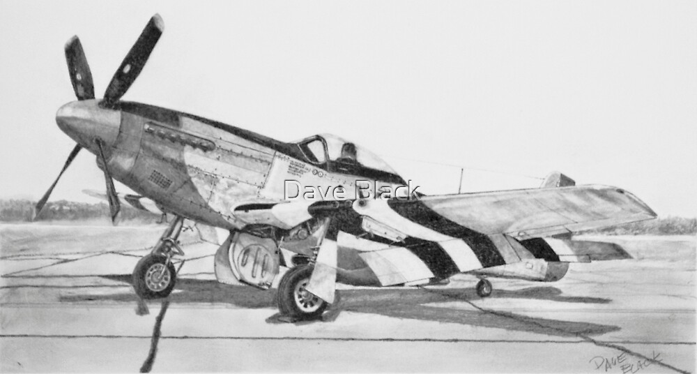 Invasion Stripes (North American P - 51 D Mustang) by Dave Black