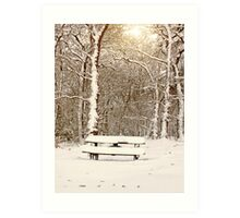 Snow Covered Bench in Ruff Wood Art Print