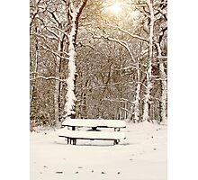Snow Covered Bench in Ruff Wood Photographic Print